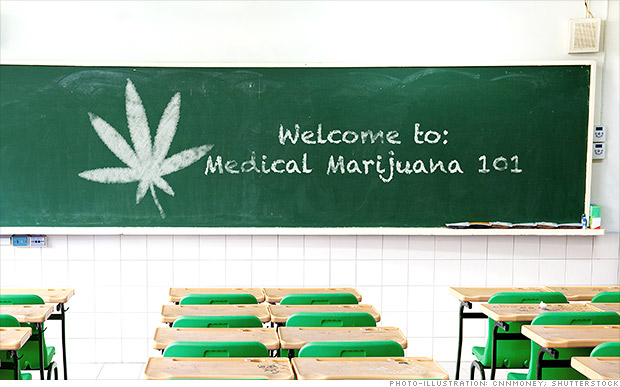 ¿Quieres estudiar la marihuana? Hay una escuela para eso