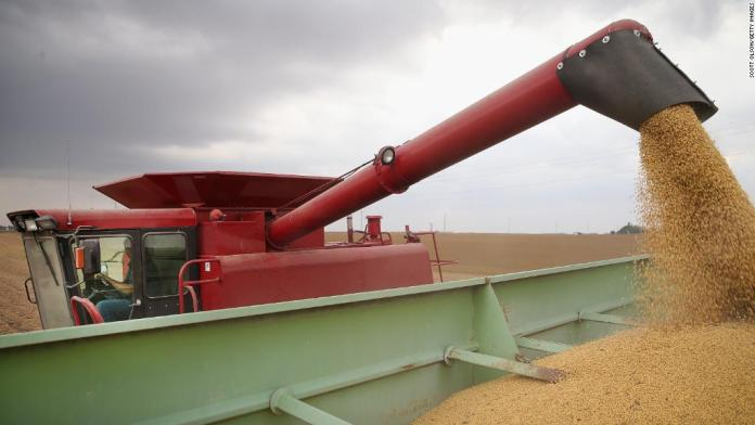 How soybeans could be pawns in a US-China trade war