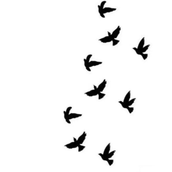 Planche de 9 Tatouages éphémères Divergente oiseaux qui s
