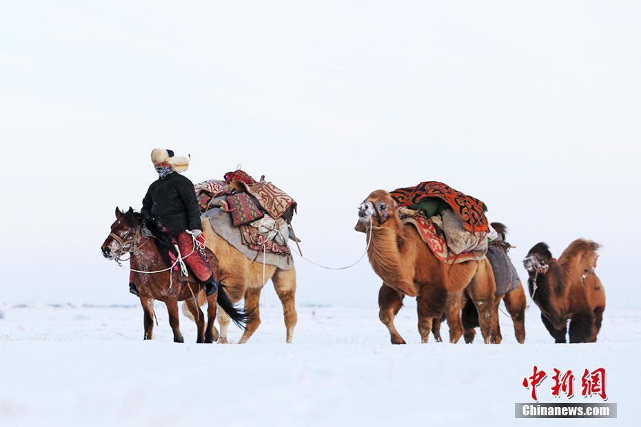 實拍新疆哈薩克族牧民冬季艱辛轉場-中新網