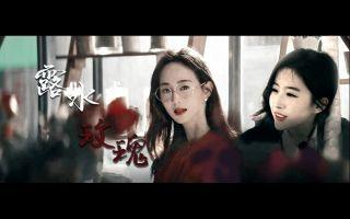 【露水玫瑰】刘亦菲 · 张钧蜜 || 爱就是连场动乱 吝啬弹药扮慈善