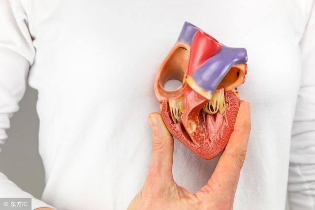 高血壓導致的心臟擴大——高血壓性心臟病 - 每日頭條