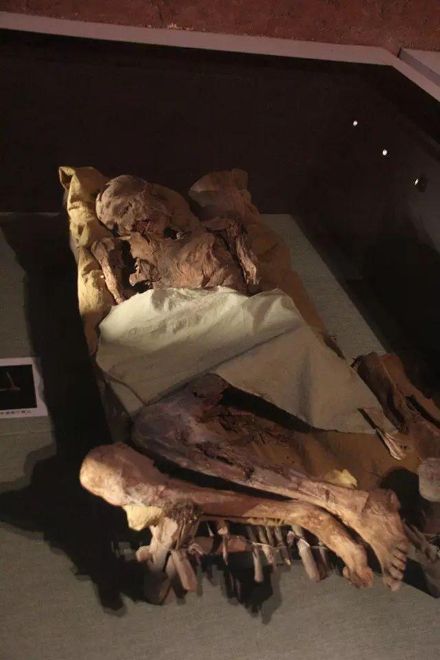 慎入|正說絲路高鐵歷史故事(十二)重口味的吐魯番博物館 - 每日頭條