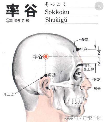 人體穴位大全——率谷穴:偏頭痛、目眩、耳鳴等 - 每日頭條