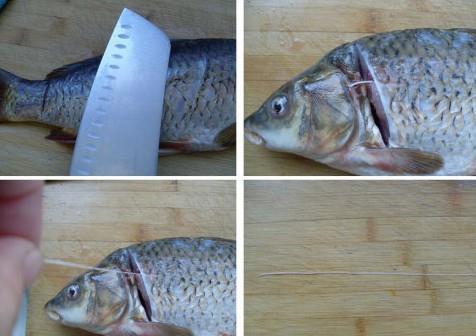 怎樣去除鯉魚的土腥味?鯉魚去除土腥味的方法 - 每日頭條