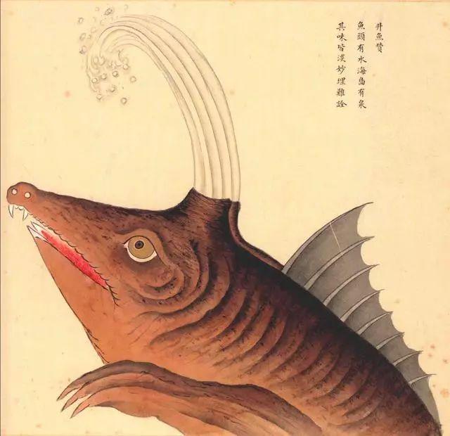 371張畫,他用一生為故宮造出海底世界—《海錯圖》詳解 - 每日頭條