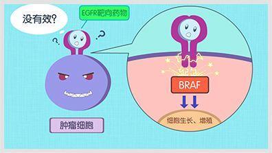 為什麼有些乳腺癌可以用靶向藥,有些不可以? - 每日頭條