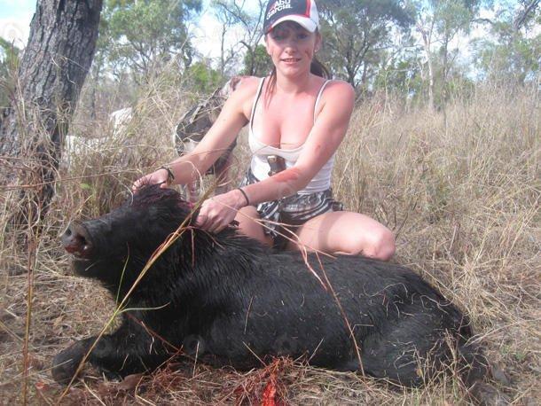 被國內早已吃成了「保護動物」。在澳大利亞卻「泛濫成災」。當地政府鼓勵合法捕殺! - 每日頭條