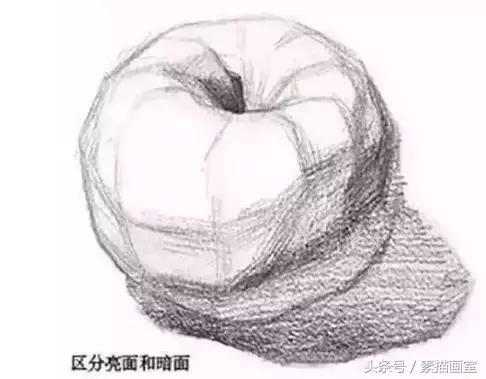 靜物蘋果素描基礎,一學就會 - 每日頭條