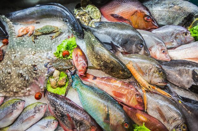 這7種海魚。至今只有野生捕撈。內行人遇到後直接買。鮮嫩又好吃 - 每日頭條