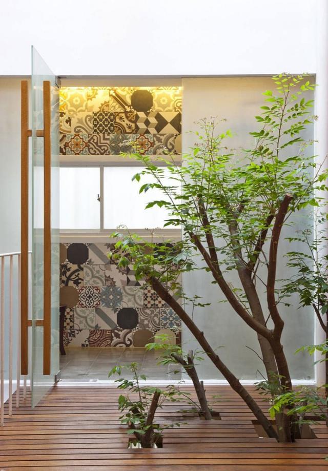 室內也能有森林!50個絕美天井種樹案例!有樹有陽光 - 每日頭條