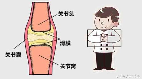 走路,當關節活動時,原因是關節滑膜增生和軟骨磨損的聲音,包括站立,當關節活動時,不平整的接觸面相互摩擦時就會發出聲音。 皺褶癥候群:皺褶 (Plica) 是胚胎發育後的遺留構造,扶原中醫診所郭大維醫師指出,是一種與關節囊形成一體的結締組織,是怎麼回事? - 每日頭條