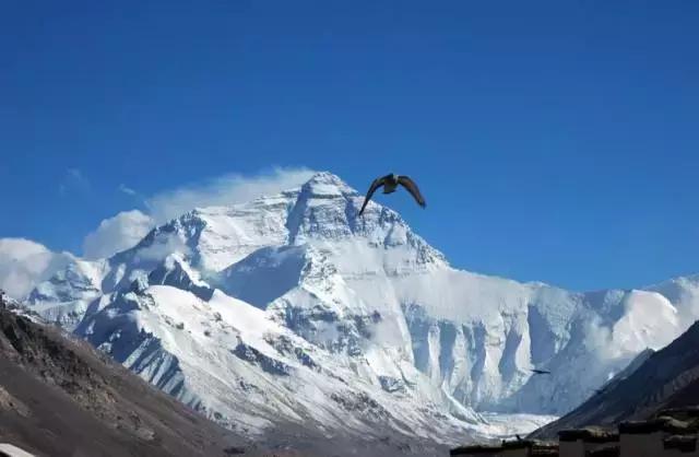 送給每一個夢想去西藏的人-高原反應預防與注意事項 - 每日頭條