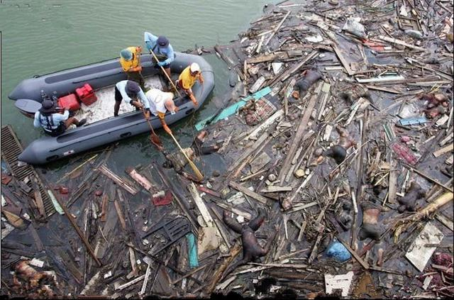 直擊04年印度洋海嘯後難民逃亡和救援現場 - 每日頭條