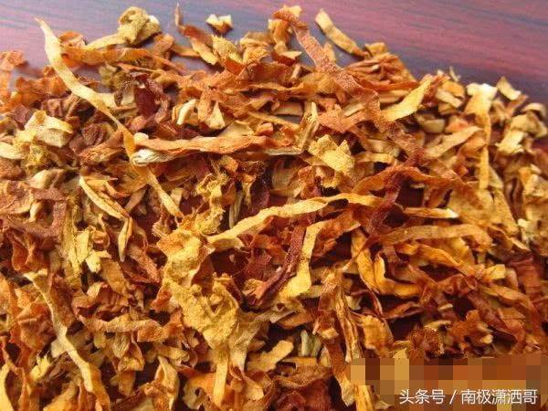 中華菸絲多少錢一斤 中華煙的菸絲特點是什麼 - 每日頭條