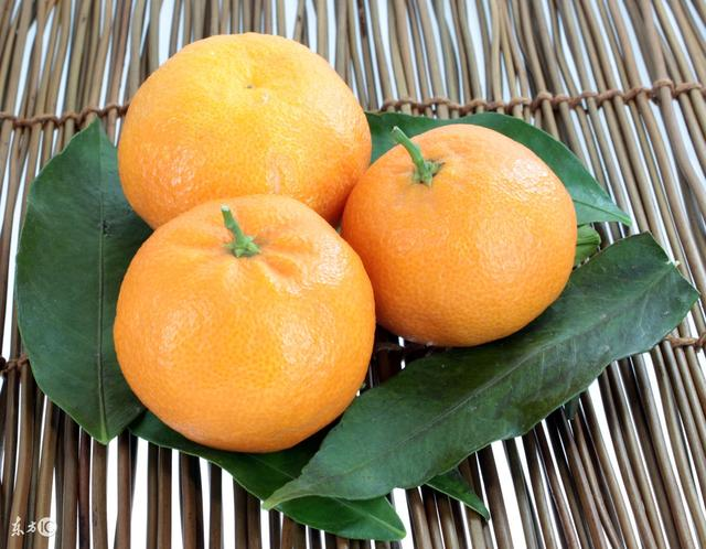 橘子皮的功效與作用及食用。橘皮泡水還有美容的效果 - 每日頭條