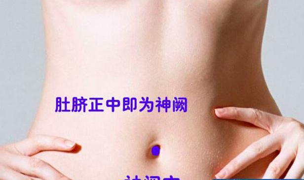 人體神奇的益氣補腎穴 - 每日頭條