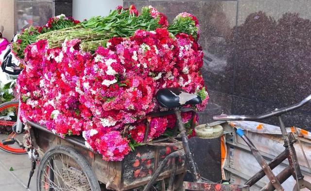 你知道全國90%的鮮花是怎麼來的嗎? - 每日頭條