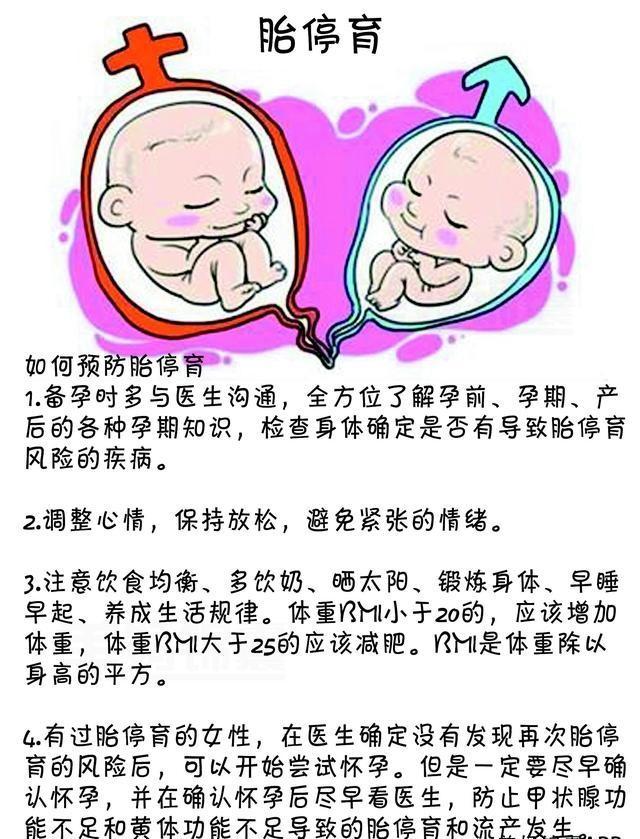 我的寶寶去哪了?原來是它造成了胎停流產。恨啊! - 每日頭條