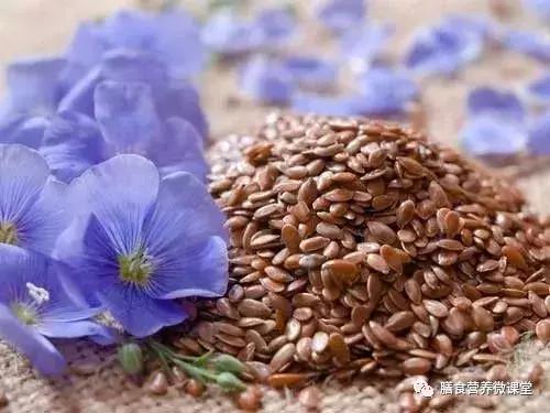 網紅亞麻籽 - 每日頭條