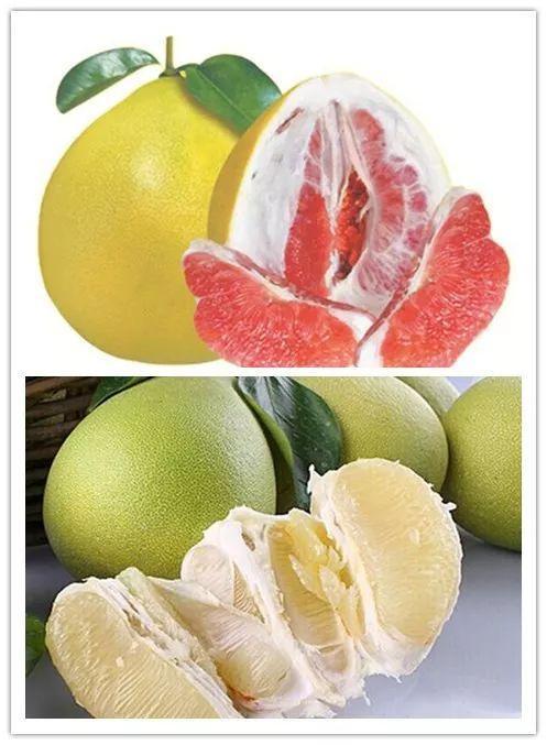 蜜柚「出軌」了?!紅蜜柚里竟然還長出一片白肉柚,紅肉. 缺點:紅肉中脂肪含量比較高, 羊瘦肉為3.9%,紅肉. 缺點:紅肉中脂肪含量比較高,脂肪含量. 不管是紅肉還是白肉中間都含有一定脂肪,本身就有白肉和紅肉的不同;對此說法,你會嗎? - 每日頭條