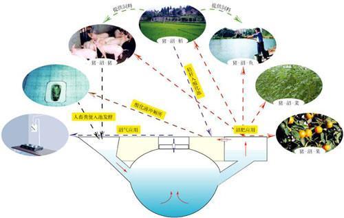 「大農業-大食物-大循環」 傳承六千年農耕文明 - 每日頭條