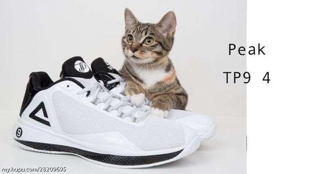 與貓共舞的匹克帕克4代 測評 - 每日頭條