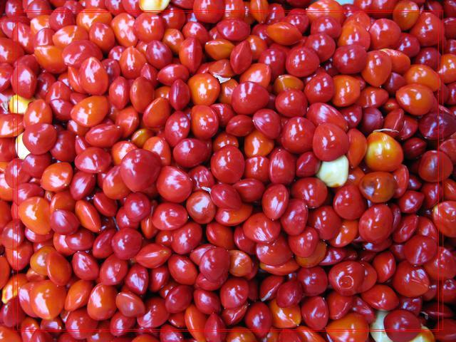 「五穀雜糧」紅豆的功效與作用及食用方法 - 每日頭條