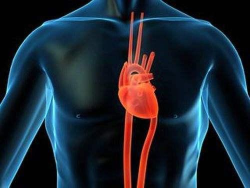 喝葡萄酒能預防心臟病?長期喝酒後患無窮。告訴你會有哪些疾病 - 每日頭條