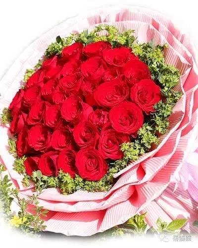 33朵玫瑰花語 - 每日頭條