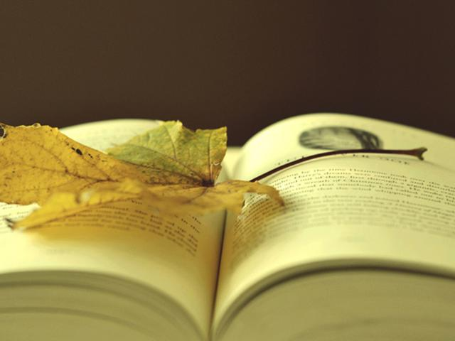 傷官佩財印,印不損,印為喜學歷高 - 每日頭條