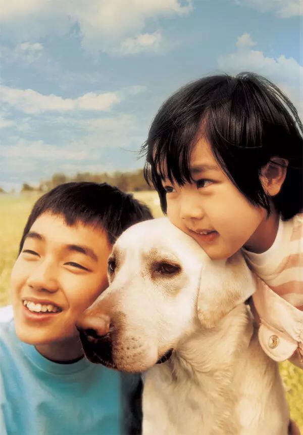 狗年必看高分狗片。這些汪星人曾讓我淚流滿面 - 每日頭條