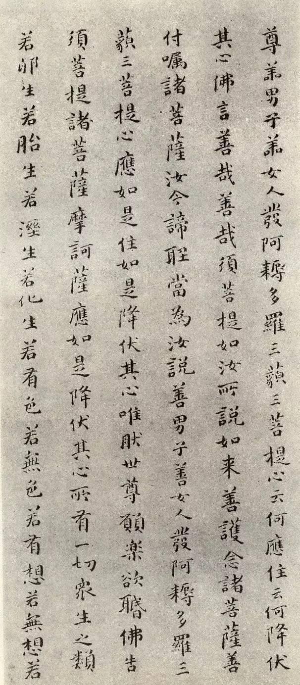 高清字帖|傅山《金剛經》 - 每日頭條
