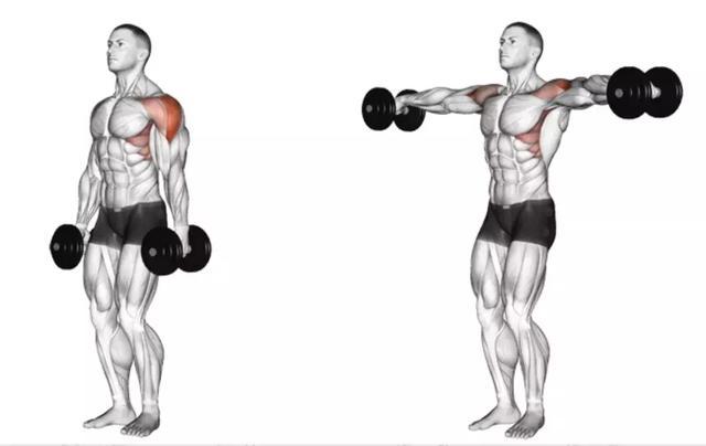 訓練 I 啞鈴側平舉怎麼練才能練就「3D」肩? - 每日頭條