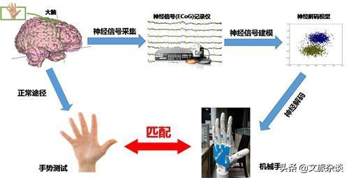 從上海科技館的腦電波比試遊戲來談:意念控制,離我們還有多遠? - 每日頭條