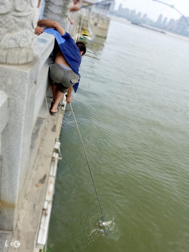 新手漁具就要這樣挑:竿挑便宜的、魚包挑最簡單的、魚箱挑最糙的 - 每日頭條