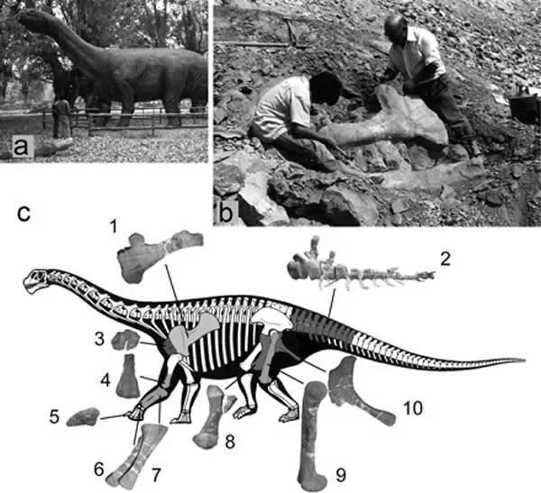閱讀《時間線 第三站:恐龍的起源與終結》 - 每日頭條