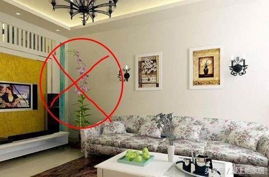 客廳財位千萬不要亂擺東西,注意幾點擺對才旺財!你家放對了嗎? - 每日頭條