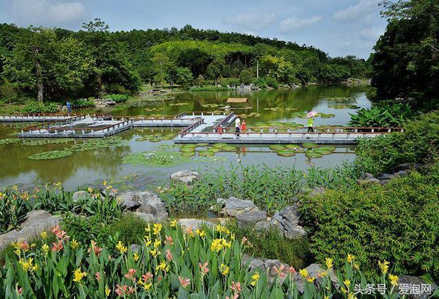 遊客來南寧旅遊度假的首選。廣西十佳景區——青秀山旅遊風景區 - 每日頭條
