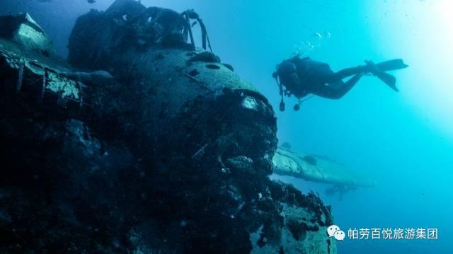 帛琉眾多潛水奇觀,你潛過幾個? - 每日頭條