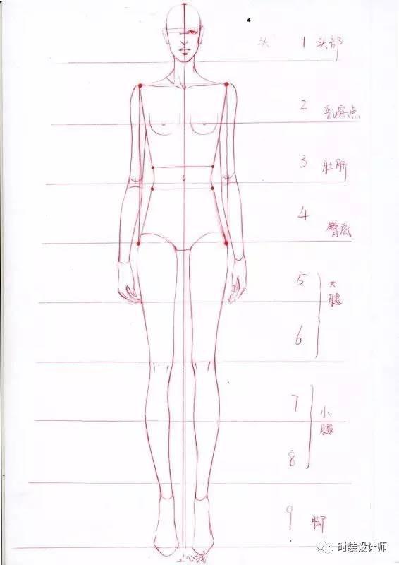 手繪乾貨——服用人體,你真的懂服裝效果圖人體結構比例嗎? - 每日頭條