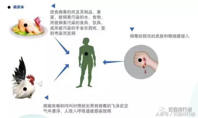 全球傳染性疾病排行榜。病毒傳染死亡達2億人。史上最恐怖 - 每日頭條