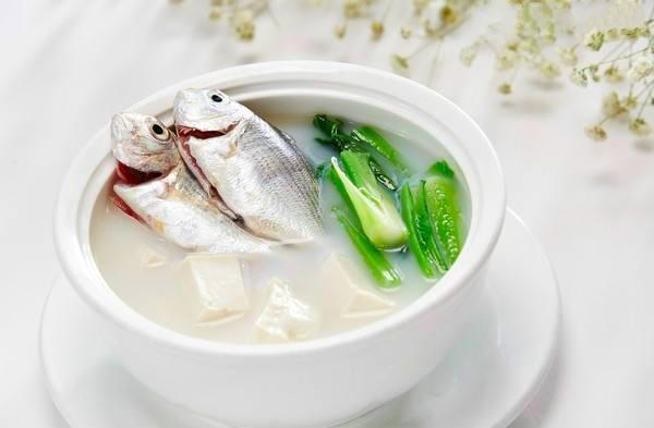 鯉魚鯽魚烏魚怎麼做湯才好喝?推薦做法和技巧解決做湯煩惱 - 每日頭條