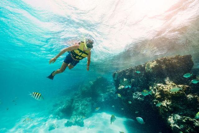 潛水需要什麼基本條件 - 每日頭條