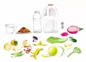 圖解環保酵素 - 每日頭條