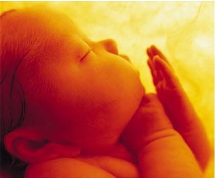 你知道胎兒每天都在媽媽肚子裡幹些什麼?吃啥嗎?太暖心太可愛了 - 每日頭條