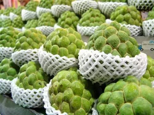 去臺灣,你不可錯過的八款水果 - 每日頭條