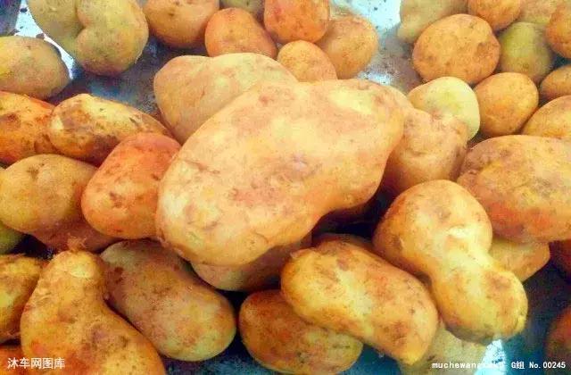土豆就是最好的「藥」,關鍵看您怎麼吃! - 每日頭條