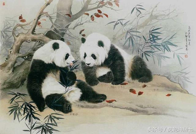 【國畫文化】寫意熊貓的畫法步驟詳解 - 每日頭條