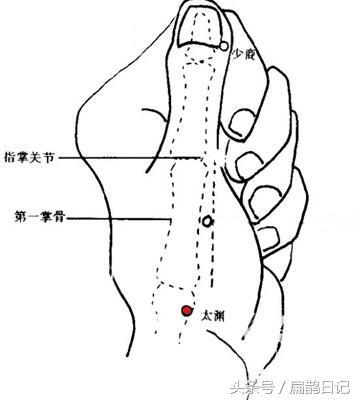 人體穴位大全——太淵穴:咳嗽、咽喉腫痛、及扁桃體炎、發熱等 - 每日頭條